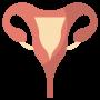 Womens health clinic gravesend